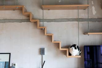 人も猫も快適な機能的な団地暮らし